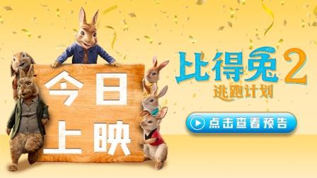 《比得兔2:逃跑计划》今日上映 萌兔反差萌拉满