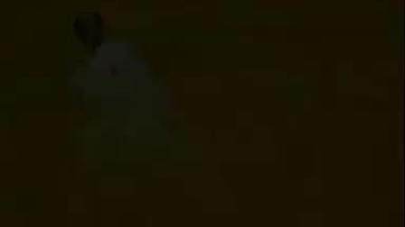 永春白鹤拳系列-鸭子氽水