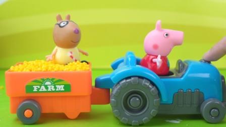 小猪佩奇户外课堂学种植小麦的故事