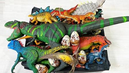 彩色恐龙远古生物玩具展示