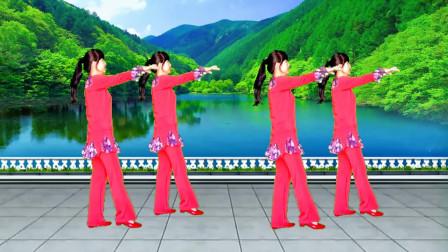 入门16步广场舞《烟花三月》歌声优美动听,简单又好看