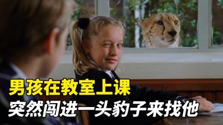 男孩在教室上课,突然闯进一头豹子,竟是来找他!温情动物电影