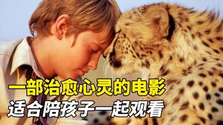 小男孩与猎豹的故事,一部治愈心灵的电影,适合陪孩子一起观看!