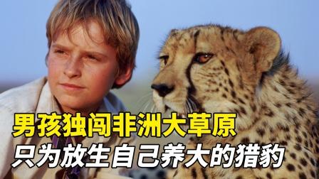 男孩养了一只猎豹,为将猎豹放生,独闯非洲大草原!温情动物电影
