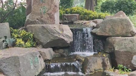 欣赏珠江公园的美景,瀑布石山流水姜园快绿湖紫薇等,湖光山色鲜花盛开