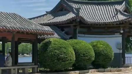 竖版短视频《大明湖公园的岛——翠柳屏》