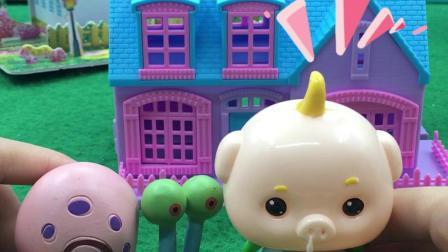 梦幻乐园:观察蜗牛
