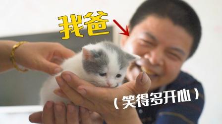 当初说讨厌猫的老爸,特意请假跑来撸小猫,太逗了!