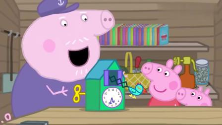 小猪佩奇:猪爷爷不服输,他要打破猪奶奶的纪录,获得第一名