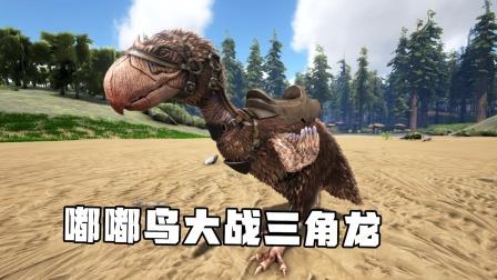方舟生存进化:火山岛 01 嘟嘟鸟大战三角龙这也太猛啦