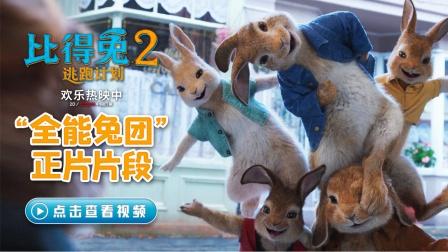 """《比得兔2:逃跑计划》发""""全能兔团""""片段 兔兔化身全能ACE"""