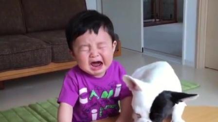萌娃被爸爸轻轻摸了一下,下一秒嚎啕大哭起来