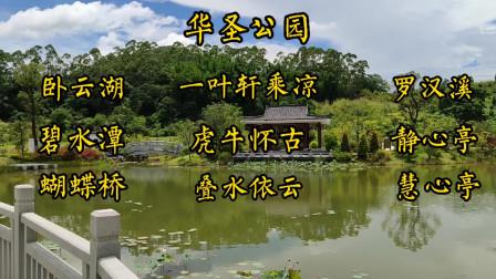 广州华圣公园,欣赏卧云湖碧水潭罗汉溪慧心亭栈道等湖光山色,荷花水石榕等鲜花盛开