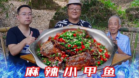 """200买10只小甲鱼,阿米做""""麻辣小甲鱼""""麻辣够味,真解馋"""