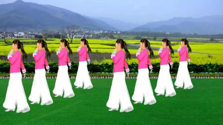 陕北民歌广场舞《荞麦花》王二妮演唱,歌声甜美,舞蹈好看好学