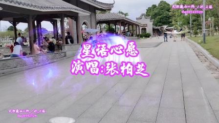 《星语心愿》——演唱:张柏芝—大理巍山—东莞石排