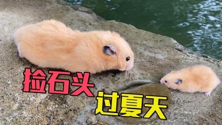 主人带小仓鼠去河边捡石头给仓鼠过夏天用