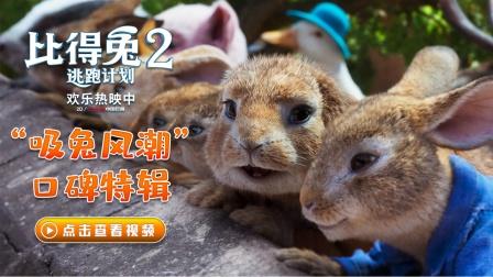 《比得兔2:逃跑计划》发口碑特辑 端午档唯一票房持续上扬影片