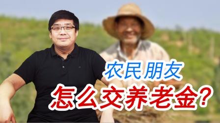 好消息!农民朋友该怎么交纳养老金?这几种方式都可以