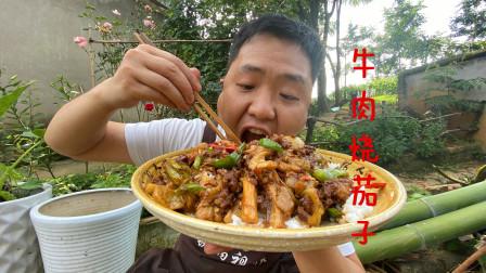 都说茄子跟米饭最搭,加牛肉爆炒味道更绝,拌饭猛吃猛吃真爽