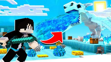 【木鱼】我的世界:制作龙骨箭,寻找地下龙穴,挑战五阶冰龙!