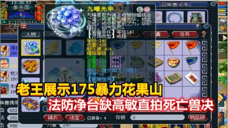 梦幻西游:老王展示175暴力花果山,法防净台缺高敏直拍死亡兽决