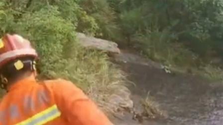 为救受伤游客消防员险坠山涧