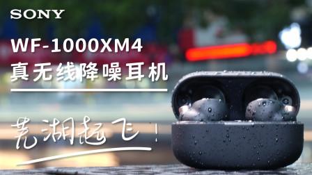 硬核索尼!音质降噪芜湖起飞-索尼WF-1000XM4快速体验