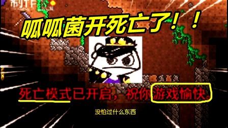 【呱呱菌】最怂战士22:死亡模式歌莉娅boss!新手这么打!