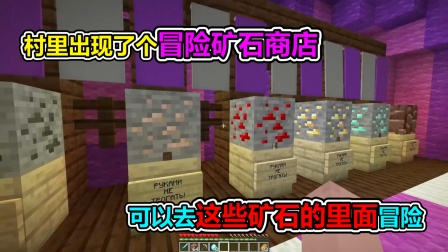 MC我的世界:村里出现了个矿石商店,可以进入矿石里面
