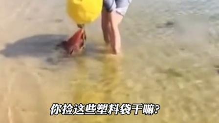 """善心可贵,小女孩主动捡拾海洋垃圾:""""怕被海洋动物吃了"""""""