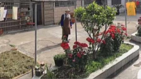 意外又戳心!男子通过时光机浏览街景地图,偶遇离世的奶奶!