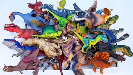 认识侏罗纪时期缤纷恐龙玩具
