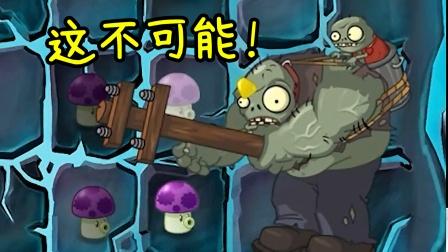 植物大战僵尸TAT版:一个不可能完成的关卡!