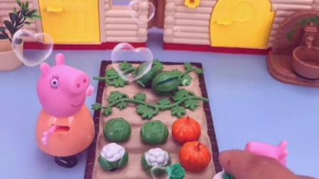 猪妈妈的菜园里都种了什么?