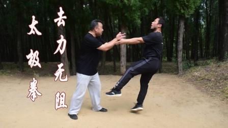 太极如摸鱼=内家拳阻力系统,这样练太极拳才能出功夫!