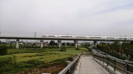 【连镇客专】高峰线G8298次(上海→徐州东)徐州东动车所CRH380B-3595担当