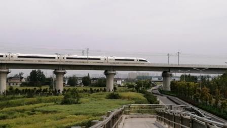 【连镇客专】G8253次(连云港→上海)合肥南动车所CRH380BL-3781担当