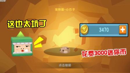 迷你世界:测试服抽传说级宠物,3000迷你币才出一只,太亏了