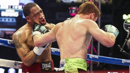 """最凶狠的一拳KO集锦,阿瓦雷兹把对手打成""""猪头三"""""""