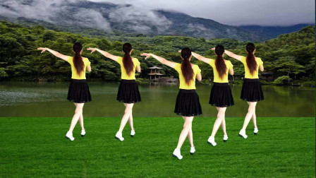 零基础广场舞《自由飞翔》好听好跳看两遍就会了