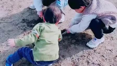 白天带孩子们沙滩一游,给你一个真正的童年