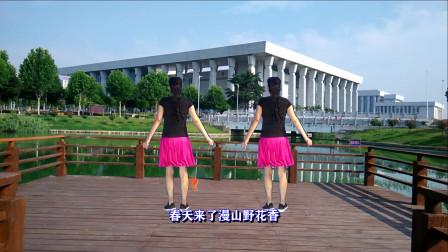 三友矿山广场舞【谁家的姑娘】弹跳64步背面演示附附分解