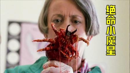 小跳蚤误食药水变异大跳蚤,喜欢寄宿在人类身上,科幻电影