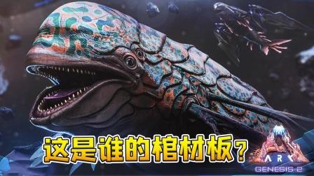 方舟创世纪2:虚空海豚如何驯服?