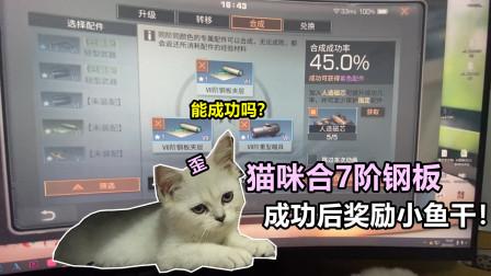 明日之后:让猫咪合7阶钢板,成功了就奖励它吃小鱼干!