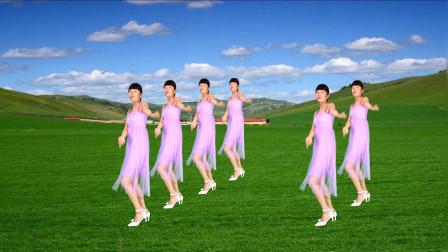 广场舞《曼丽》经典歌曲回味悠长,简单动作越跳越漂亮