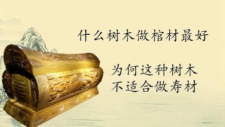 什么树木做棺材最好?为何这种木材做的棺材,一般人不敢睡?
