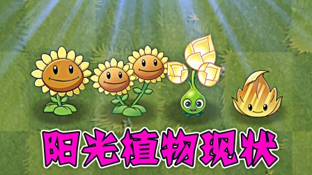 植物大战僵尸:阳光植物现状,谁最好用呢?