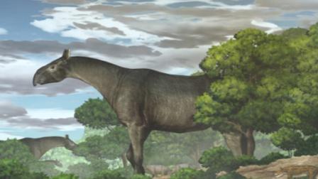 甘肃发现巨犀化石 有4头大象那么重